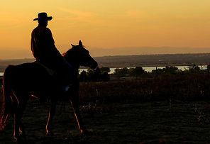 cowboy-283449_1920.jpg