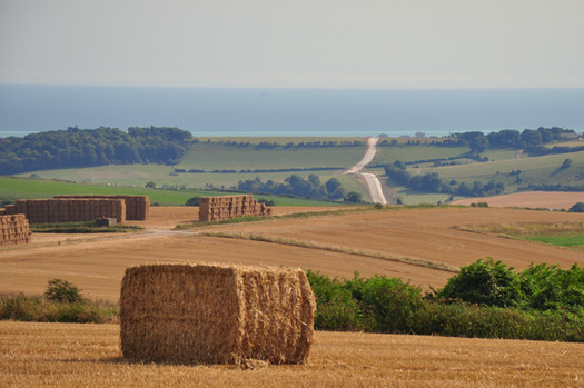 Looking south from the South Downs National Park, north west of Hove.
