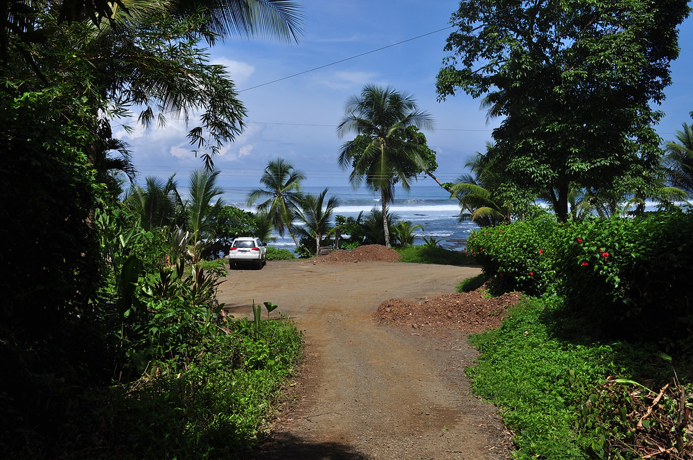 The track climbs steeply behind the camera away from the ocean to the Yoga Farm.