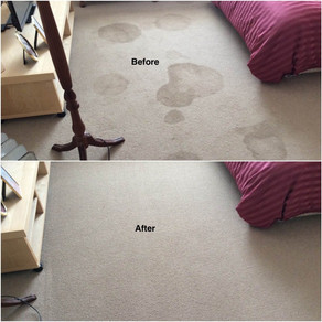 Perth Carpet Steam Cleaning and Stain Removal