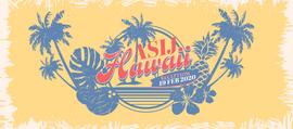 Hawaii Instagram Post 2020