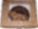 Donut Box - single.png