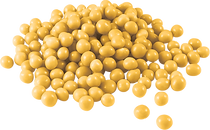 Crumbs - Caramel.png