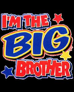 sibling big brother.png