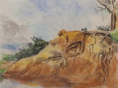 Les racines, vers Koro,  collection particulière