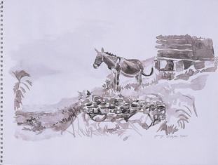 L'âne, pays Dogon , Collection particulière