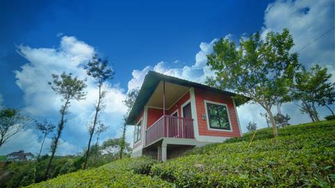 Cloud end Cottage