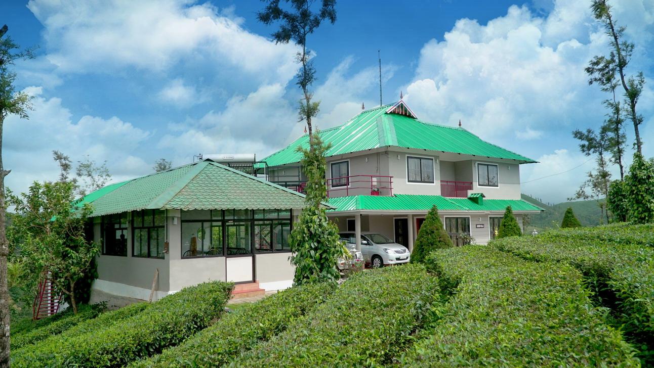 Green villa cottage and restaurant