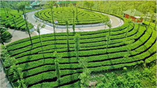 Green Hill Estate view