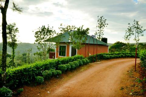 Dafodil Cottage