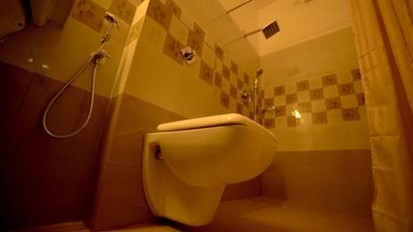 Toilet View 1