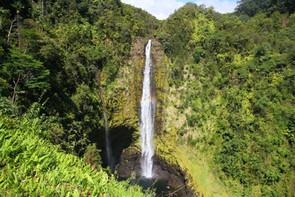 Akaka Falls | Big Island, HI.