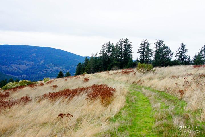 Dolason Prairie Trail, CA.