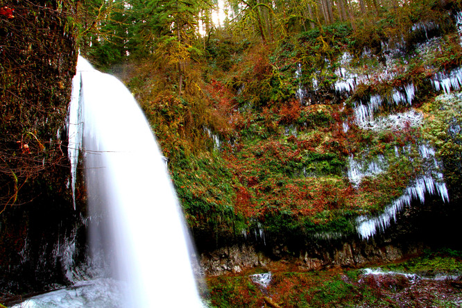 Silver Falls   Oregon.