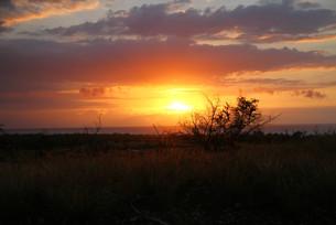 Kona Sunset   Hawaii.