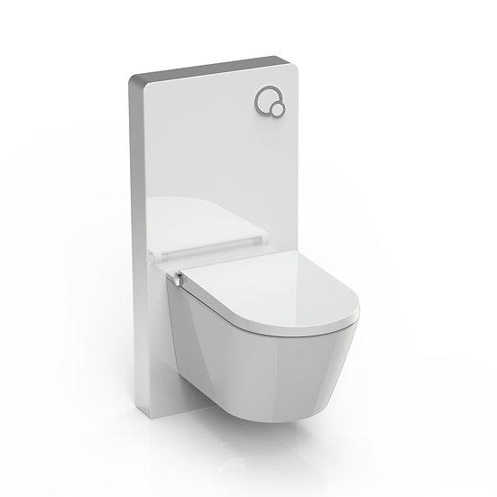 ELTERLEIN 805 - Module sanitaire pour WC suspendu avec plaque de déclenchement