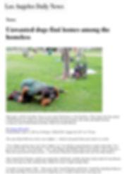 1Daily News.jpg