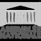 logo AN.png