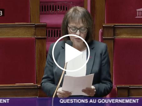 Question au gouvernement relative aux mesures économiques prises durant la crise du COVID-19