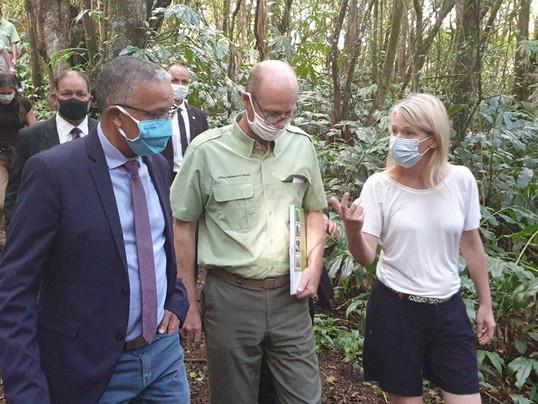 La Réunion, terre de biodiversité