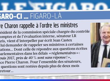 """""""Pierre Charon rappelle à l'ordre les ministres"""" (Le Figaro)"""