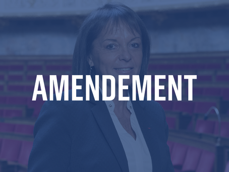 Amendement sur le projet de loi Audiovisuel relatif à la production indépendante