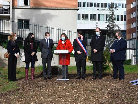 Plantation d'un cèdre promenade Bernard Lafay en présence de l'ambassadeur du Liban