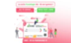 Bannière-Site-Web-DINO.png