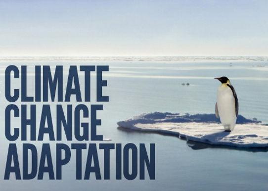 Balancing adaptation at COP22: the future of adaptation finance