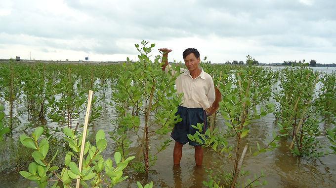 Adaptation 4(the)sea: why coastal areas need adaptation