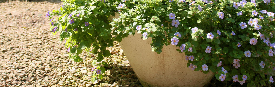 macetas, macetas de fibra de vidrio, fibra de vidrio, decoraciion, decoracion del hogar, jardin, jardineras, macetones