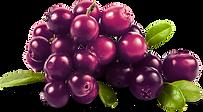arandanos fruto rojo con propiedades como rejuvenece la piel