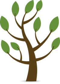 Image of a tree.
