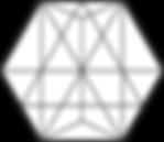 Logo PRISMM