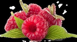 fruto rojo anti oxidante