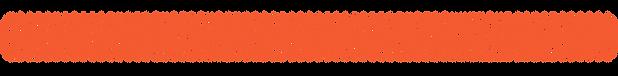 Shorthorns Forever Association, Texas, Shorthorns Forever, Schulenburg, Shorthorns, non-profit, alumni, charity, grants, teacher, funding, donate, donation, mentor, shop, member