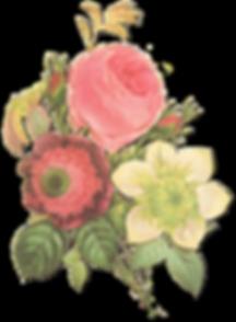 El arriate Flores - Floristería las palmas