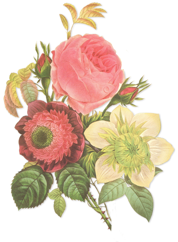 veritas flowers, flower rentals