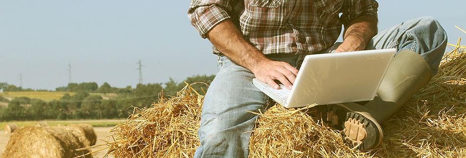 produtor rural trabalhando na plantação