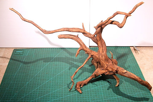 ①プレミアム枝流木(スマトラウッド)XLサイズ
