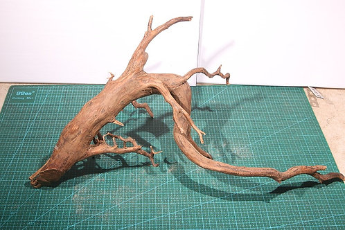 ⑤プレミアム枝流木(スマトラウッド)XLサイズ