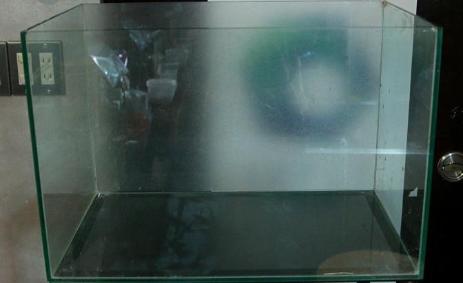 45Pジオラマ系ファンタジー水槽制作