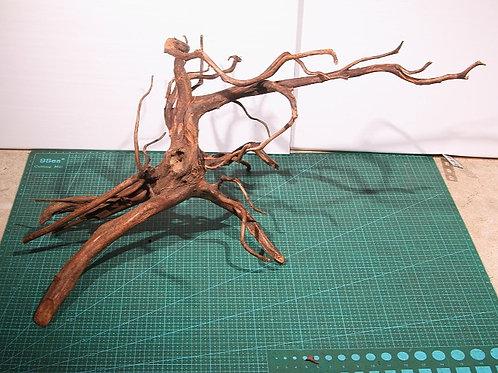 ②プレミアム枝流木(スマトラウッド)XLサイズ