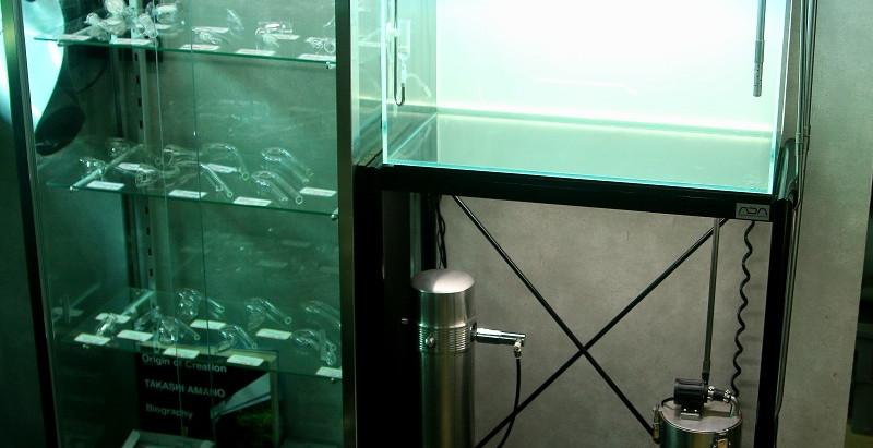 60cm水槽のレイアウト