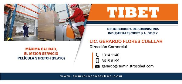 DIRECCION COMERCIAL - GERARDO-01.png