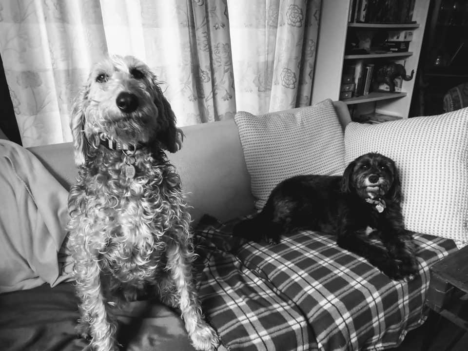 Daphne & Ozzy
