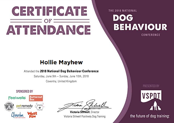 Dog Behaviour Conference Certificate 2018