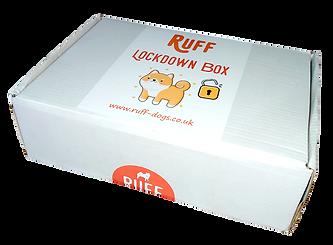 ruff_lockdown_dog_training_box-closed.pn