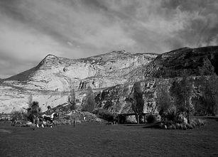 horse in quarry landscape copy.jpg