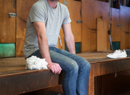 The Wool Press : Tim Brown